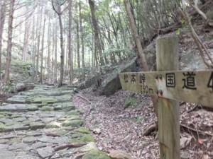 「松本峠 250m」の道標