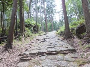 松本峠付近