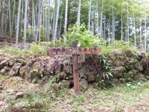 「木本登り口 600m、国道42号 500m」の道標(松本峠)