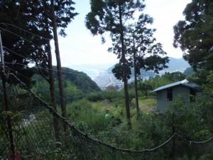 松本峠から木本登り口へ