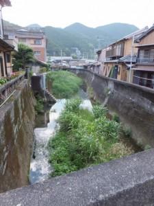 笛吹橋から望む西郷川の上流側