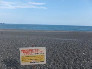 七里御浜(国道42号 熊野市駅口交差点付近)
