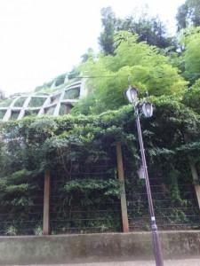 七里御浜からJR熊野市駅へ向かう途中