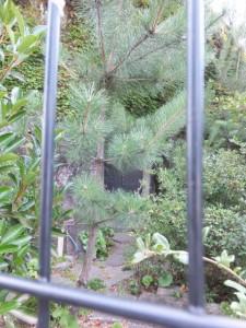 神仙洞に張られたフェンスと鉄の扉