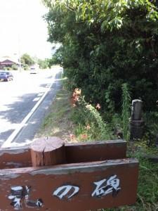 巡礼の碑(巡礼供養碑)、国道42号沿い