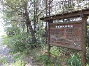 七里御浜国有林の説明板