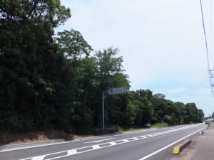 国道42号、「道の駅 紀宝町のウミガメ公園 1km」の案内板