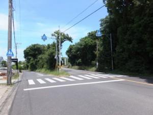 振り向いて、熊野古道(左)と国道42号へ向かう道(右)