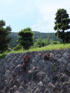 「←横手地蔵」、「見松寺→」の道標付近から望む山側