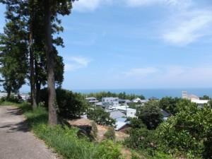 太平洋一望コースの案内板付近の風景