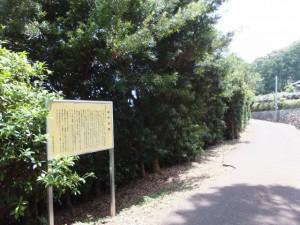 狼煙場跡(紀宝町井田字大石)の説明板付近