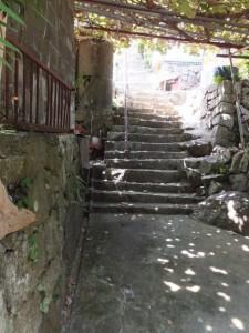 狼煙場跡(紀宝町井田字大石)の説明板付近の段々畑に敷設されたモノレール