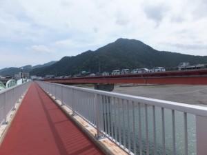 熊野大橋の隣に架かる歩道橋(熊野川)