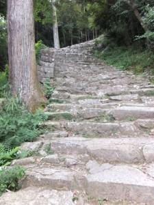 急な石段の参道(神倉神社)