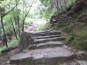 やや緩やかな石段の参道(神倉神社)