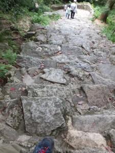 急な石段の参道、下り(神倉神社)