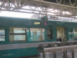 普通 紀伊勝浦行き(JR紀勢本線 新宮駅にて)