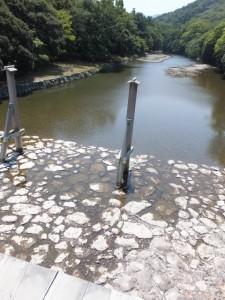 宇治橋から望む五十鈴川の上流側