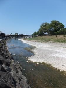 烏帽子岩下流側から望む新橋(五十鈴川)