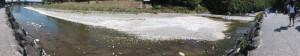 新橋から烏帽子岩までの180°パノラマ(五十鈴川)