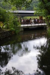 表参道火除橋から望むせんぐう館休憩舎方向