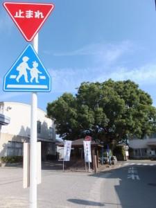 西農業研修センター付近(伊勢市二見町)