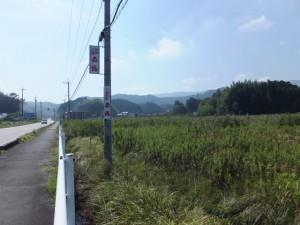 国道42号、JR参宮線 松下駅付近