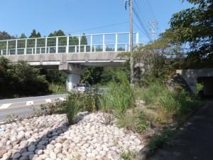 国道42号 松下跨線橋付近