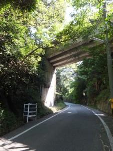 伊勢志摩スカイライン高架下の道路