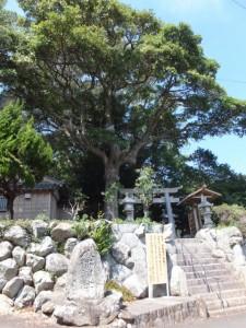 御遷座を控えた八幡神社(鳥羽市船津町)