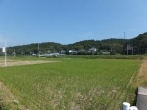 加茂神社道の道標付近から望む近鉄 観光特急しまかぜ