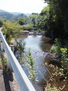 加茂川(近鉄 松尾駅〜青峯山登山口)