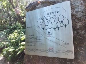 松尾道(青峯山登山口〜正福寺)、ますきち岩の説明板