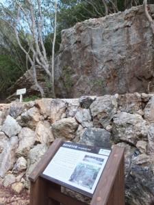 松尾道(青峯山登山口〜正福寺)、あまかぼうか岩と説明板