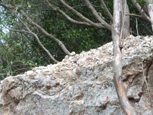 松尾道(青峯山登山口〜正福寺)、あまかぼうか岩