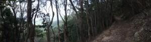 松尾道(青峯山登山口〜正福寺)、おとく茶屋跡付近