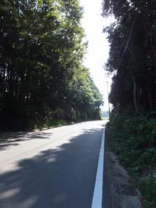 近畿自然歩道(青峯山登山口〜近鉄 上之郷駅)