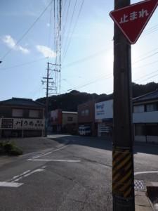 国道167号との交差点から望む佐美長神社の社叢