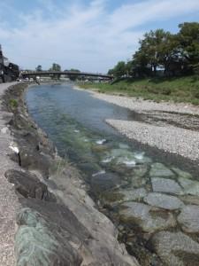 烏帽子岩付近から望む新橋方向(五十鈴川)