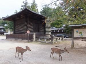 法華堂経庫と御髪塔(東大寺)