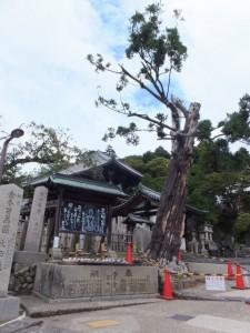 二月堂の手水所のひとつ(東大寺)