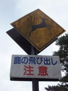 大仏池(二ツ池)付近の交通標識『鹿の飛び出し注意』(東大寺)