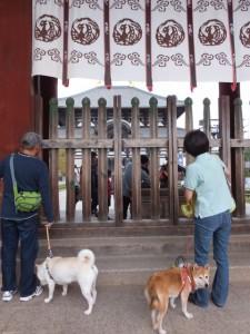 中門にて(東大寺)