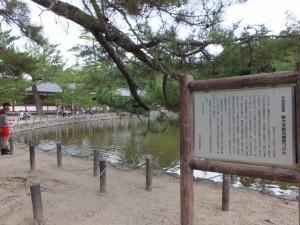 天然記念物 東大寺鏡池 棲息ワタカの説明板付近