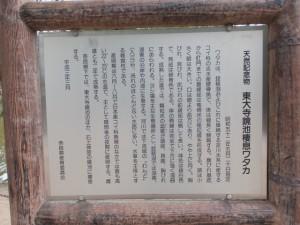 天然記念物 東大寺鏡池 棲息ワタカの説明板