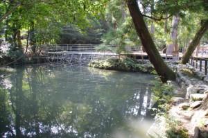 御池に残されている鉄パイプの支柱(外宮)
