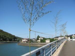 浜橋(加茂川)に張られた注連縄