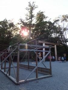 菊花奉納・展示の準備(外宮)