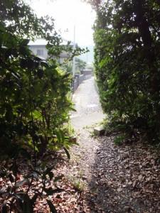 堅田神社の鳥居前の小径