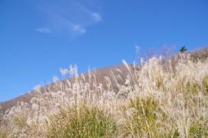 休憩広場から望む高見山(大峠の登山口〜高見山山頂)